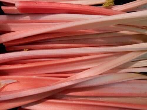 Bénéfices et effets secondaires de la rhubarbe