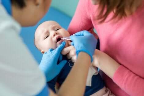 La prévention contre le poliovirus.