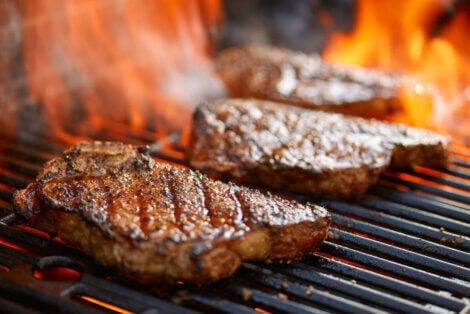 Le régime carnivore est-il viable ?