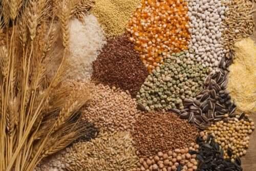 Comment inclure des graines dans votre alimentation ?