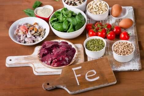Les aliments contenant du fer.