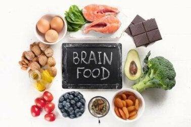 6 aliments bénéfiques pour la santé de votre cerveau