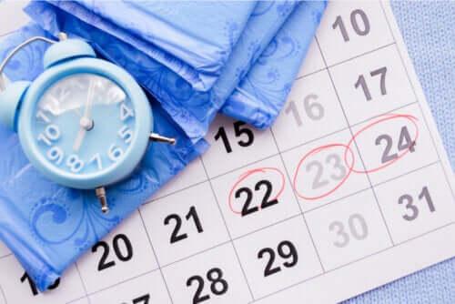 Puis-je tomber enceinte en cas d'aménorrhée ?