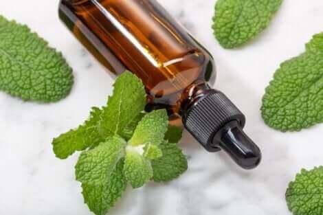 De l'huile essentielle de menthe.