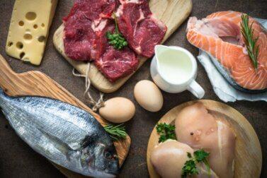 Que sont les protéines et à quoi servent-elles ?