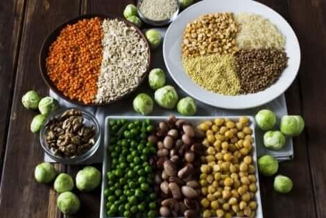 Des protéines végétales.