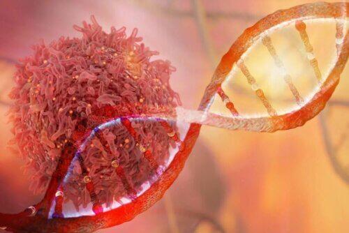 Les cellules cancéreuses ont subi une modification de leur ADN.