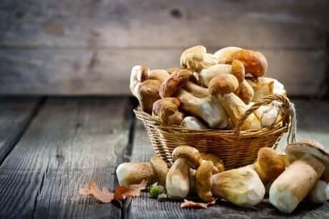 Des champignons sur une table.