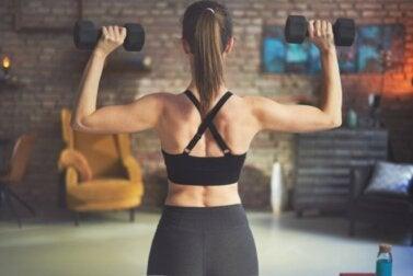 Exercices avec des haltères ou des poids pour travailler le dos