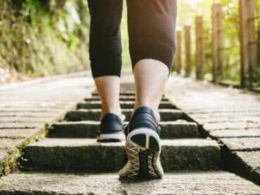 Marcher après un repas : est-ce sain ?