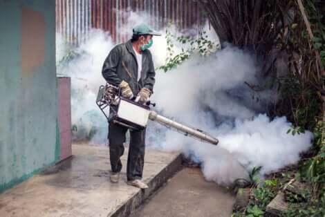 La technique de fumigation.