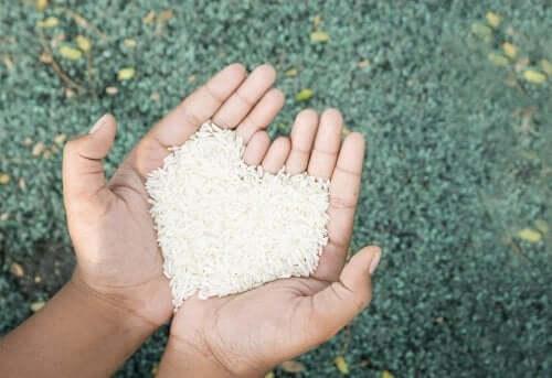 Manières saines de préparer le riz.