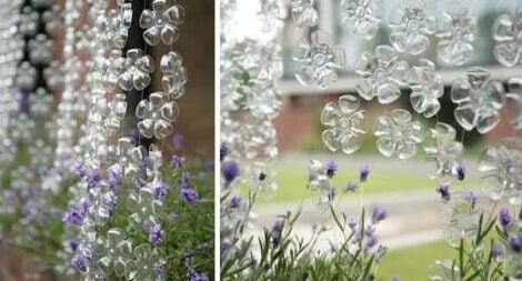 Un rideau de fleurs.