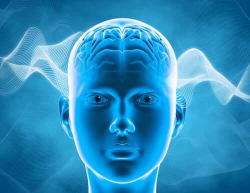 Qu'est-ce que le cerveau chimio ?