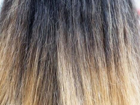 Des cheveux secs.