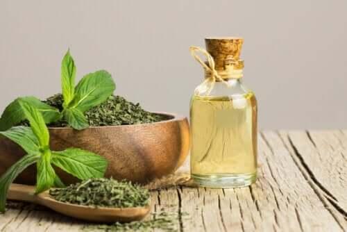 L'huile de menthe aide-t-elle contre le syndrome de l'intestin irritable ?