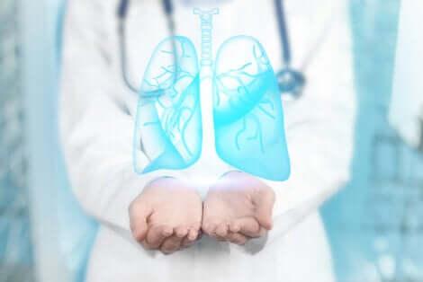 Un médecin qui tend ses mains et soutient des poumons en 3D.
