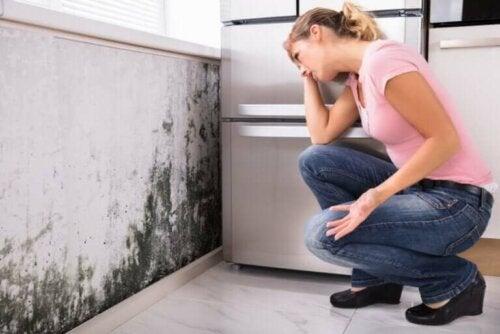 La moisissure à la maison cause-t-elle des problèmes de santé ?
