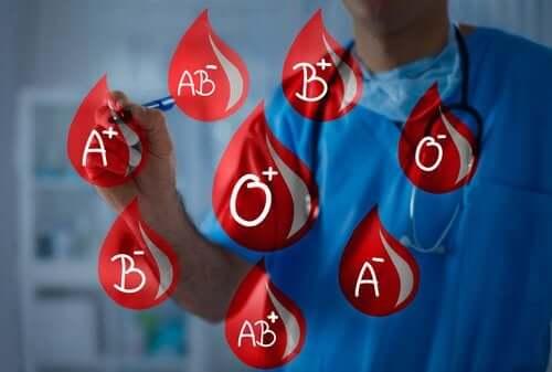 Les différents types de sang