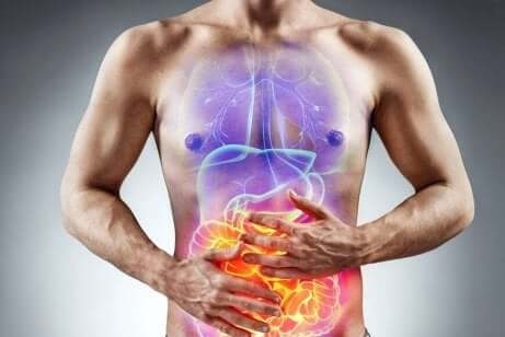 Douleurs et inflammation des intestins.