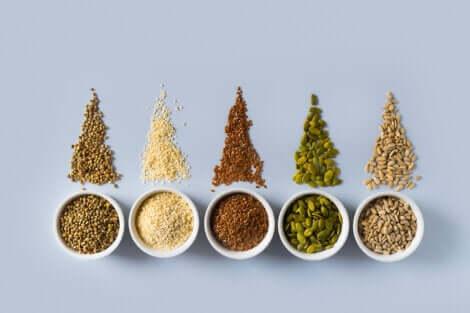 Les propriétés des graines.