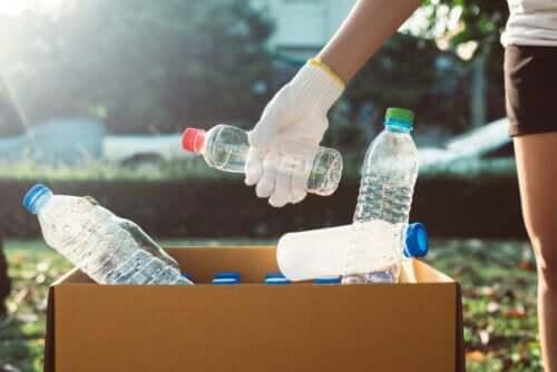 Combien de temps mettent nos objets les plus habituels à se décomposer dans la nature ?