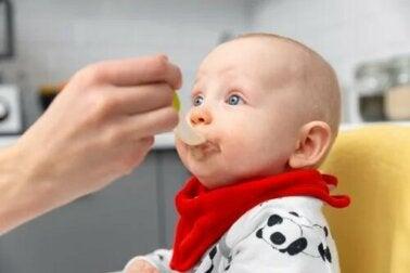 Lignes directrices pour l'introduction de l'alimentation complémentaire