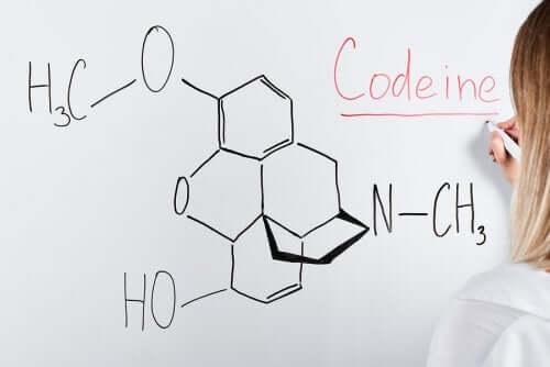 Qu'est-ce que la codéine ?