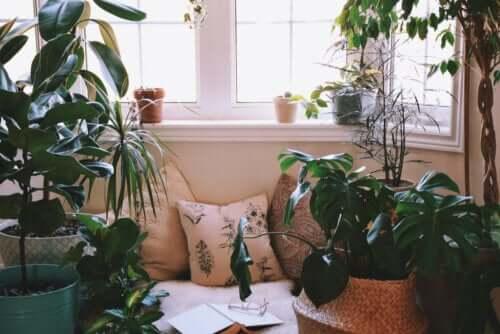 Idées pour créer un coin détente à la maison