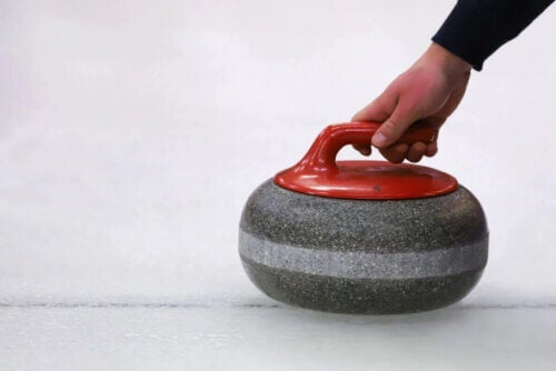 Une pierre de curling.