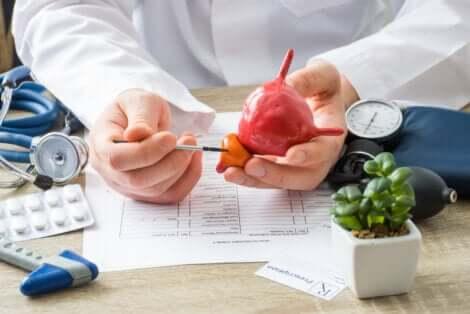 La prostate chez le médecin.