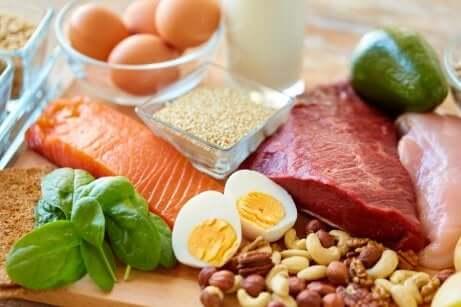 Aliments riches en graisses et en protéines saines.