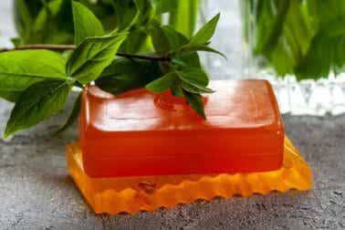 Utilisations, propriétés et contre-indications du savon de papaye