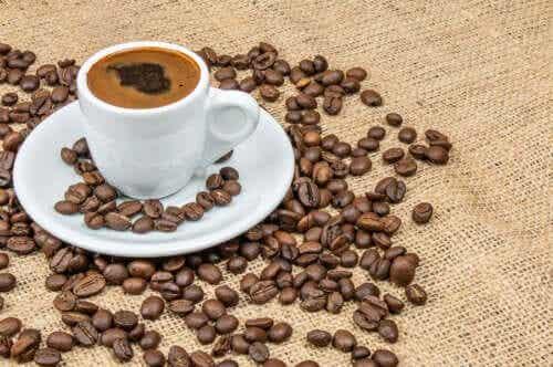 Les polyphénols du café et le diabète