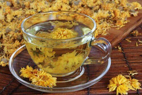 Thé au chrysanthème : avantages et précautions