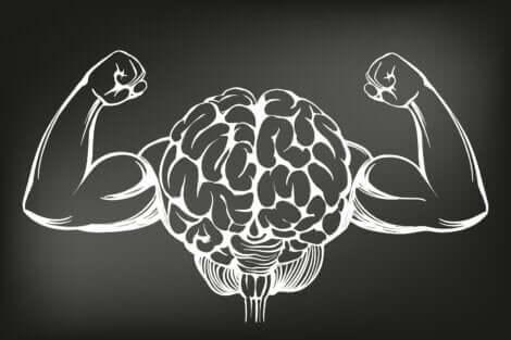 Dessin d'un cerveau avec des bras musclés.