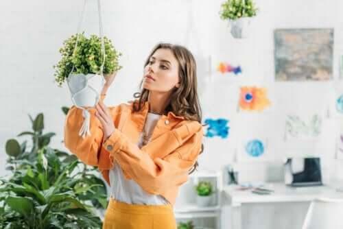 Comment faire un pot suspendu maison pour vos plantes ?