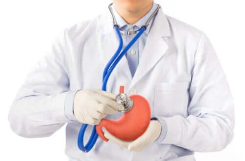 Protecteurs gastriques et antiacides : en quoi se différencient-ils ?