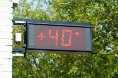 Comment les températures extrêmes affectent-elles le corps humain ?
