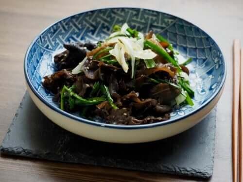Propriétés, utilisations et avantages du champignon noir chinois