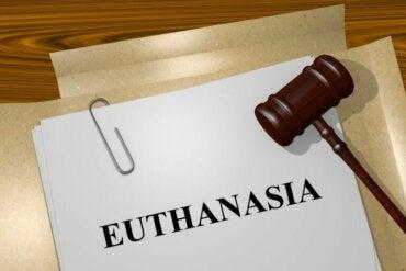 Les types d'euthanasie que vous devez connaître