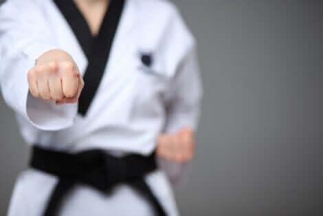Posture de taekwondo.