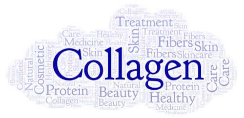 À quoi sert le collagène ?