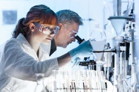 Deux chercheurs en laboratoire.