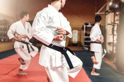 Quelles sont les différences entre le karaté et le taekwondo ?
