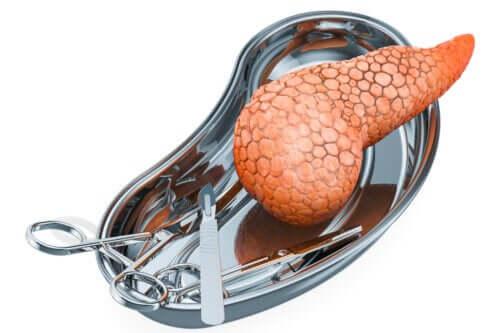 Transplantation de pancréas : pourquoi la réalise-t-on et quels sont ses risques ?