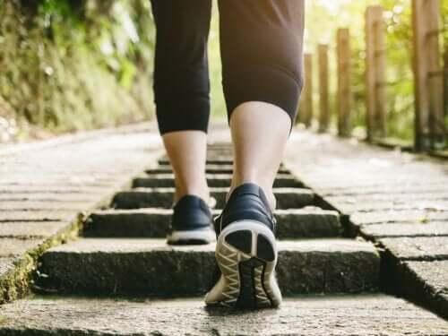 Entraînement cardiovasculaire à faible impact : exercices et recommandations