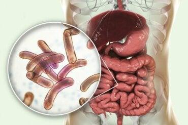 Traitement de la prolifération bactérienne
