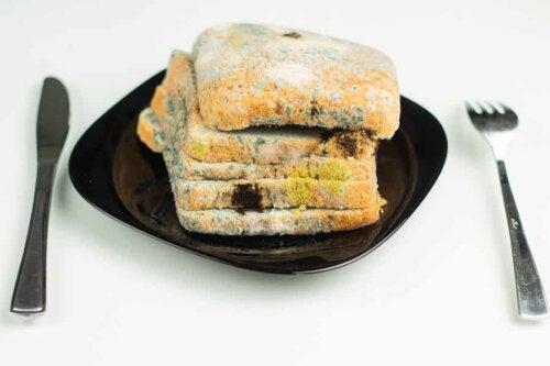 Des tranches de pain avec de la moisissure.