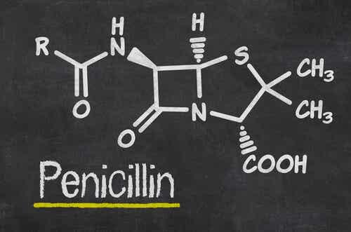 La pénicilline en schéma.